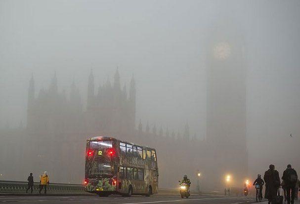 fog telugu meaning